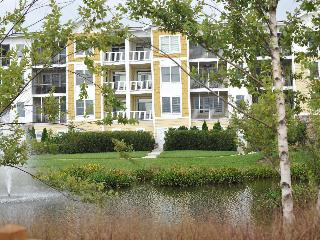 Family Resort/Golfers Haven/ Pool,Tennis,& Beach - Selbyville vacation rentals