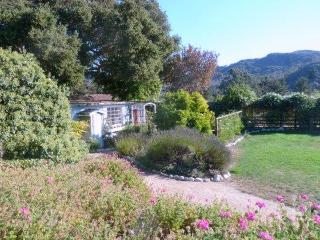 Carmel Valley Cottage, Mtn Views, Monthly Rental - Carmel vacation rentals