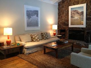 Comfortable Family Home in Aspen's West End - Aspen vacation rentals