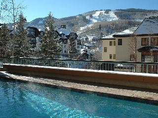 2 Bedroom Condominium - Unit 8 The Centennial - Avon vacation rentals