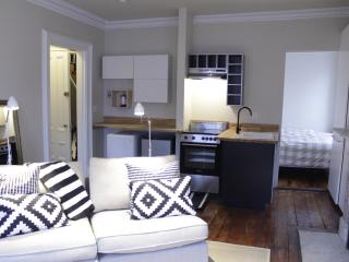 Sparkling, brand new South End apartment - Boston vacation rentals