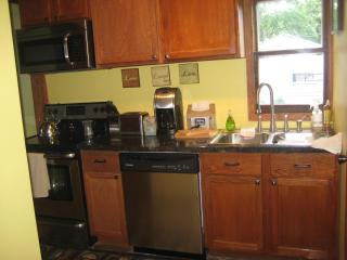 1 Br/Ba Furnished Home Near Minnehaha Falls/Train - Minneapolis vacation rentals