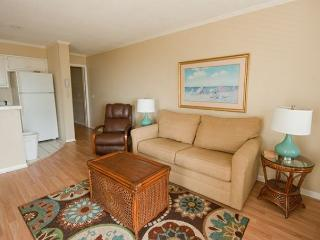 Ocean Dunes Villa 316 - 2 Bedroom 2 Bathroom Oceanfront Flat Hilton Head, SC - Hilton Head vacation rentals