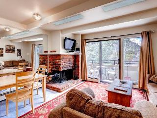Aspen Townhomes East 9 - Aspen vacation rentals