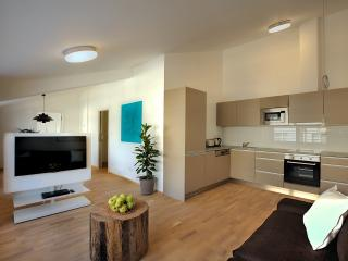 Uptown Apartment - Prague vacation rentals