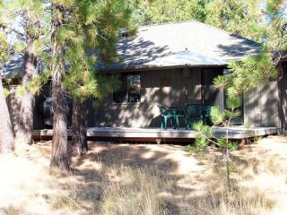 Private Hot Tub, Bikes, Pet Friendly, Free & Discounted SHARC Passes - Sunriver vacation rentals
