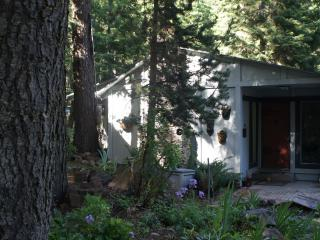 New Moon Cottage - Klamath Falls vacation rentals
