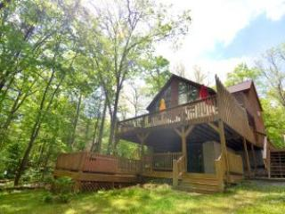 Lake Effect - Swanton vacation rentals