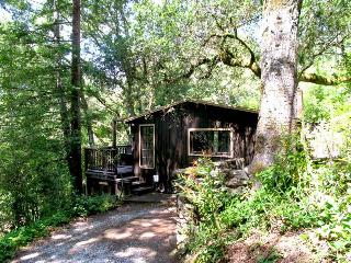 TREEHOUSE GROVE - Russian River vacation rentals