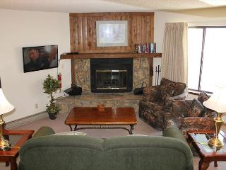 SL4826 Updated Condo w/ Wifi, Fireplace, Common Hot Tub - Silverthorne vacation rentals