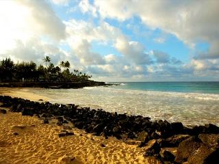 ******AVIS car included*** Newly renovated 2 bedroom** CALL NOW - Kapaa vacation rentals