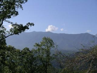 Big Timber Lodge - Gatlinburg vacation rentals