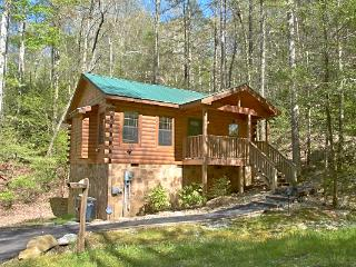 Bear-Tastic Memories - Gatlinburg vacation rentals