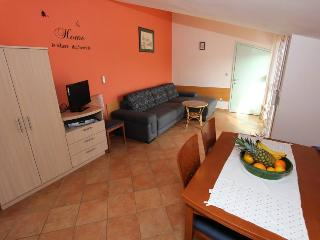 Apartment Zaton (B1) - Zaton vacation rentals