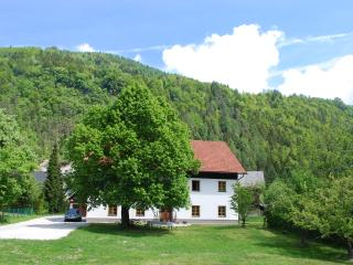 Country House Trata - Studio apartment 2-4 persons - Slovenia vacation rentals