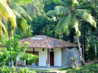 Leisure Land Tea Villa  - Leisure Land  ( Luxury Eco villas in Tea Garden) - Dambulla - rentals