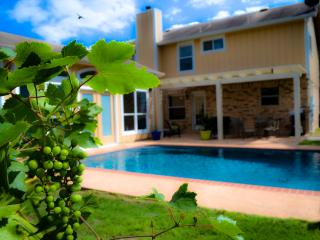 San Antonio Pool Paradise, 4 Bedrooms, Guest House - San Antonio vacation rentals