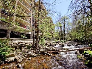 2BR Luxurious Gatlinburg Condo w/ Mountain Views. August from $99/nt. - Gatlinburg vacation rentals