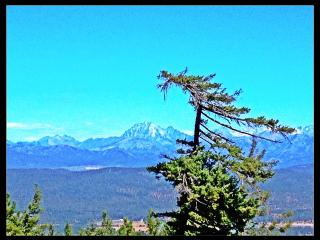Breathtaking Views From This Custom Cabin! Hunting-Fishing-Hiking & More! - Cle Elum vacation rentals
