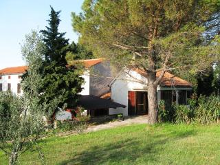 Under the pine tree, beautiful view - Izola vacation rentals