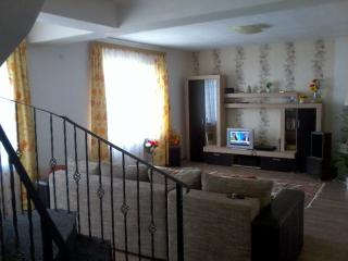 Casa Adina holiday rental - Timisoara vacation rentals