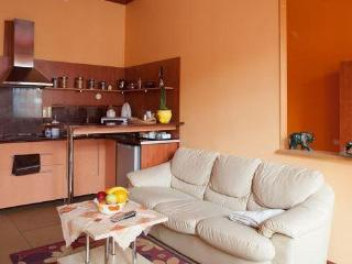 Cosy studio in the very city center - Kaunas vacation rentals