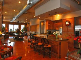 Cook Loft - Knoxville vacation rentals