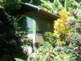 Banana Patch Cottage, a tiny gem! - Hilo District vacation rentals