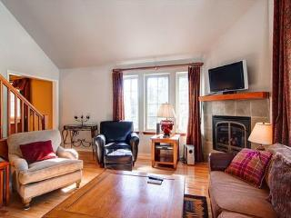 Snowshoe Chalet Luxury 3BR Townhome ~ RA44174 - Breckenridge vacation rentals