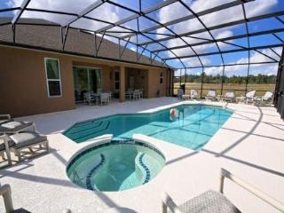 Brand New Stylish Home Overlooks Conservation Area - Davenport vacation rentals