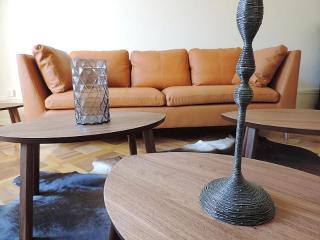 7 room flat in the heart of Geneva - Geneva vacation rentals