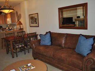 Copper Springs Lodge - Copper Mountain vacation rentals