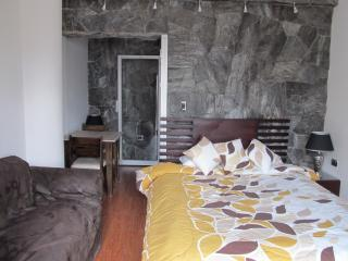 Beautiful Real Rock Decoration minutes from Center - Cuenca vacation rentals