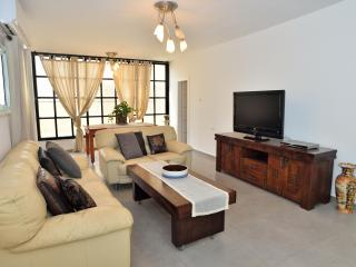 Huge beach apt in BAT YAM - Bat Yam vacation rentals