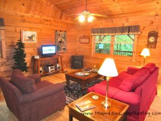 Blowing Rock Hideaway - Blue Ridge Mountains vacation rentals
