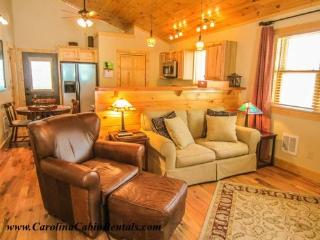 Bear Tracks Cabin - Blue Ridge Mountains vacation rentals