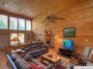 Bear Tracks Bungalow - Blowing Rock vacation rentals