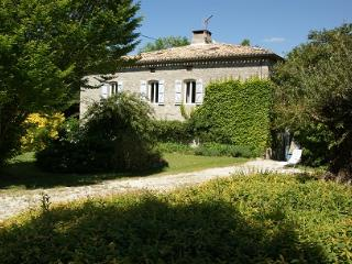Chateau de Cartou, peace and quiet in the Quercy - Tarn-et-Garonne vacation rentals