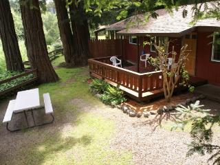2 bedroom cabin in the redwoods with fireplace - Felton vacation rentals