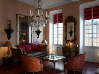 Authentic XVIII 's century Palace in the old town - Nice vacation rentals