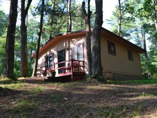 Ferns--Fishing/Family-friendly Cabin on Trout Lake - Boulder Junction vacation rentals