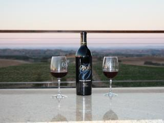Amazing views in the heart of wine country! - Templeton vacation rentals