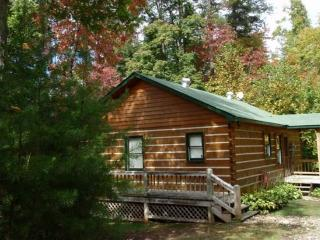 Moose Lodge - enjoy simple pleasures - Blue Ridge vacation rentals