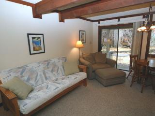 Tahoe Racquet Club Lower 98 - Nevada vacation rentals