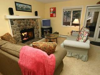 McCloud 255 - Incline Village vacation rentals
