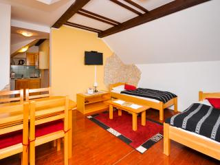 Apartments Etno - 81151-A3 - Plitvice Lakes National Park vacation rentals