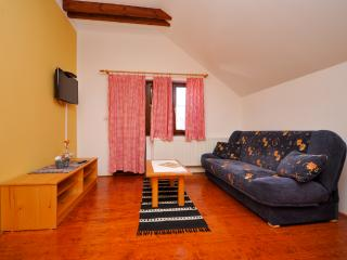Apartments Etno - 81151-A4 - Plitvice Lakes National Park vacation rentals