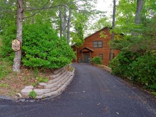 Blue Vista - Sevierville vacation rentals