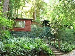 FOREST LODGE - California Wine Country vacation rentals