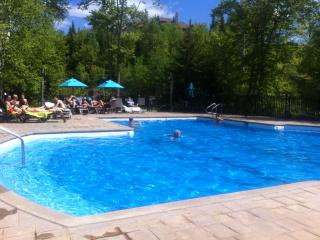 Mont Tremblant Lakeview Terrace - A Real Gem - Look no Longer - Quebec vacation rentals